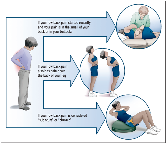 low back pain physiotherapy treatment pdf
